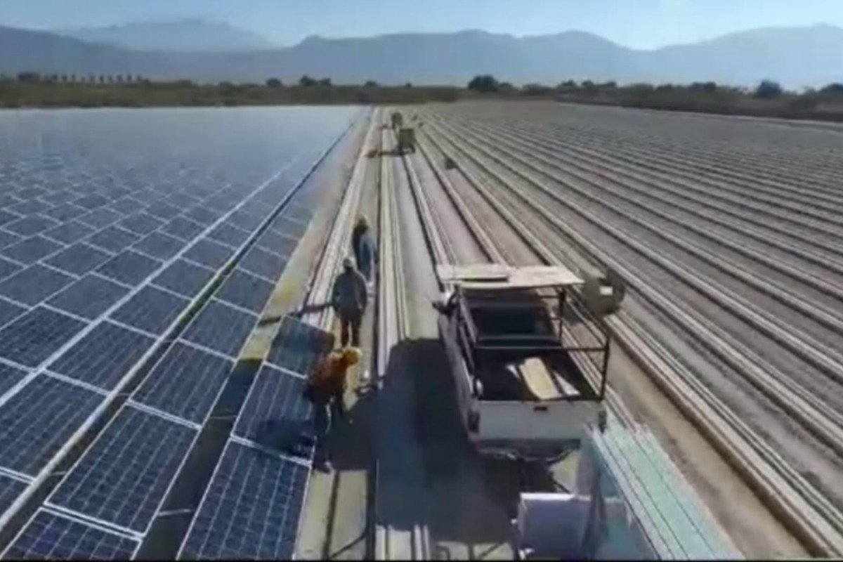 Fortius Solar recently completed its Jalisco 1 solar orchard